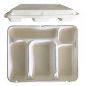 Plateau bagasse compartimentés - plateau pour dégustation sur place - solution d'emballage naturelle pour les collectivités